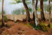 Berk en bomen, olieverf op paneel, 30x24 cm.